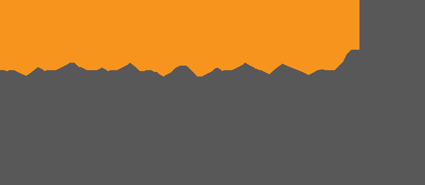 Danang International Marathon logo