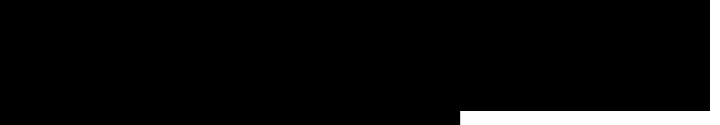 HCMC Run logo